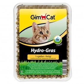 GimCat Katzengras Hydro-Gras
