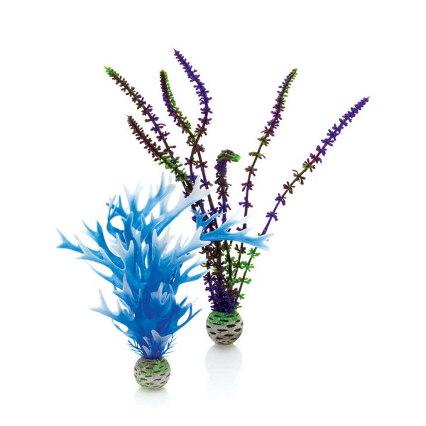 biOrb Aquariumpflanzen-Set Easy Plant blau/viol...