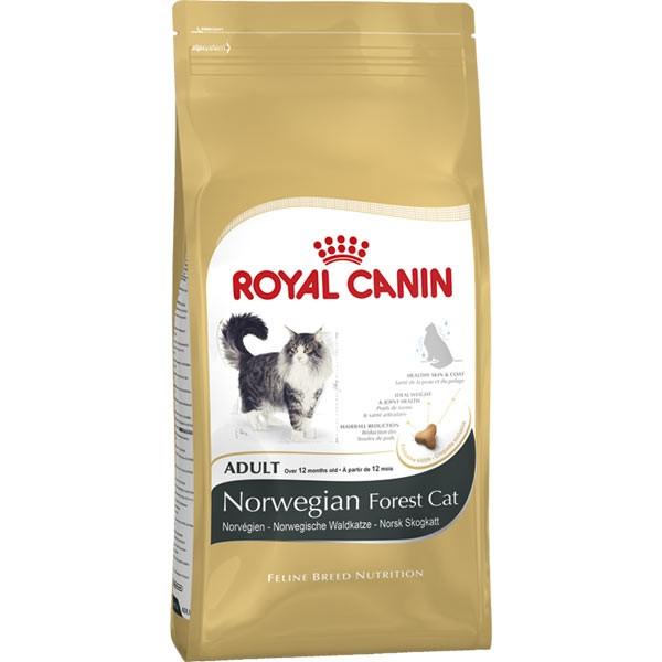 royal canin katzenfutter norwegische waldkatze. Black Bedroom Furniture Sets. Home Design Ideas