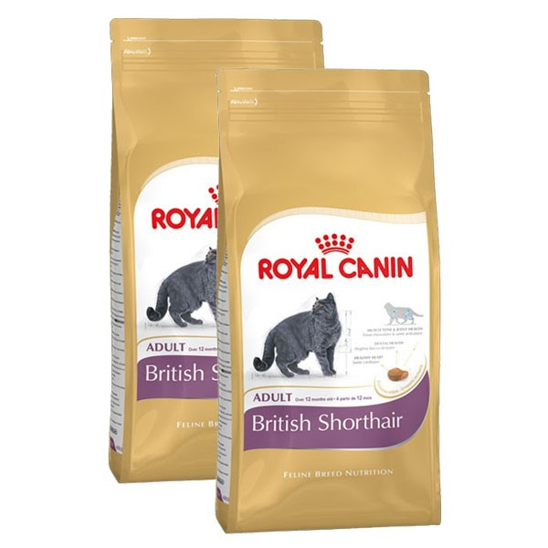 royal canin katzenfutter british shorthair 2x10kg bei zooroyal. Black Bedroom Furniture Sets. Home Design Ideas