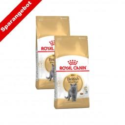 Royal Canin Katzenfutter British Shorthair