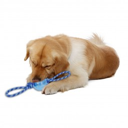 Cesar Millan Hundespielzeug Flying 8
