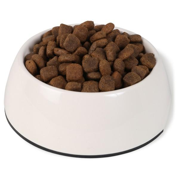 Bosch PLUS Hunde-Trockenfutter Forelle & Kartoffel