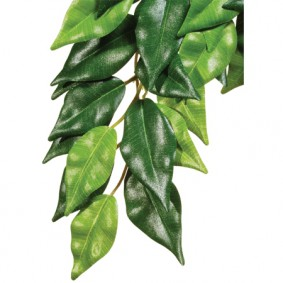 Exo Terra Ficus Kunstpflanze für Terrarien