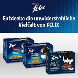 FELIX So gut wie es aussieht Doppelt Lecker in Gelee Geschmacksvielfalt aus dem Wasser 12x85g