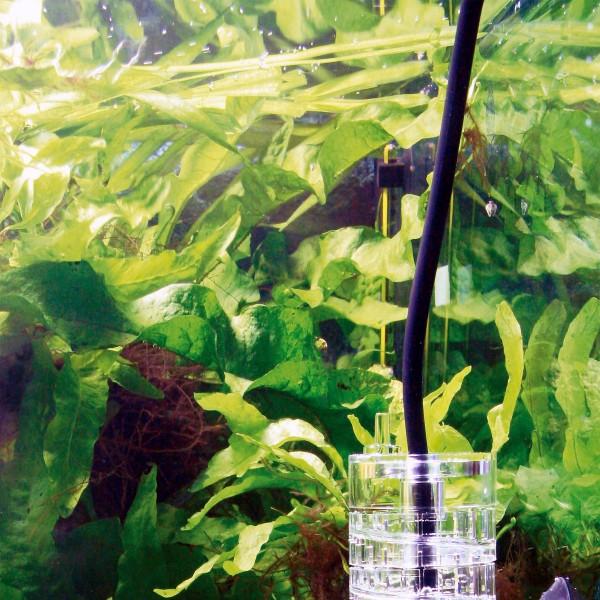 JBL Spezialschlauch für CO2-Anlagen ProFlora T3 BLACK 2 - 3m