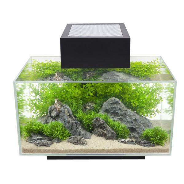 Fluval Edge I Aquarium - Schwarz