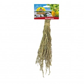JR Birds Gartenkresse 25g