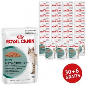 Royal Canin Katzenfutter Instinctive +7 in Soße 85g 30+6 Stück gratis
