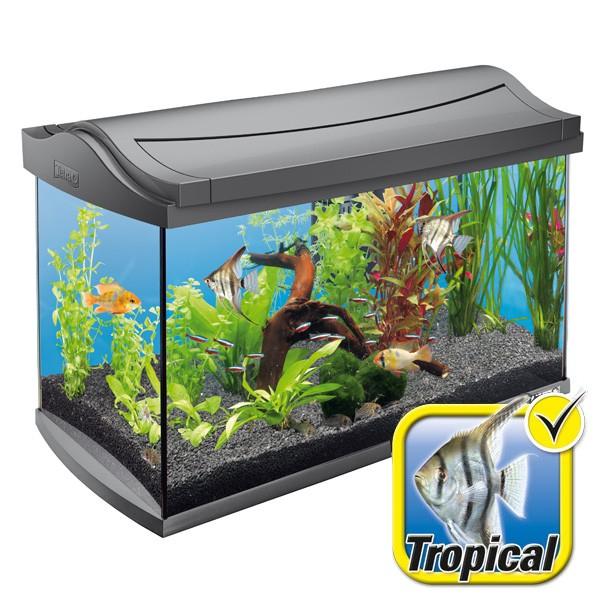 Tetra AquaArt Aquarium-Komplett-Set 60 Liter an...
