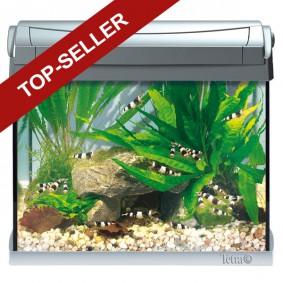 nano aquarium f r kleine fische garnelenzucht zooroyal. Black Bedroom Furniture Sets. Home Design Ideas