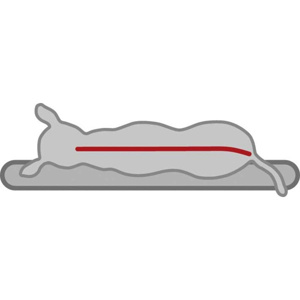 Trixie Vital Kissen Santo orthopädisch