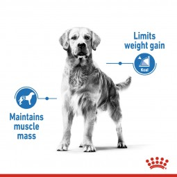 ROYAL CANIN LIGHT WEIGHT CARE MEDIUM Trockenfutter für zu Übergewicht neigenden Hunden
