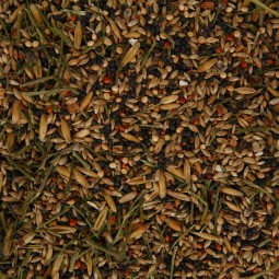 Vitakraft Canarian Hauptfutter für Kanarienvögel