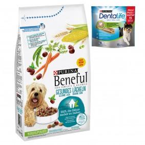 Beneful Hundefutter Gesundes Lächeln 11kg + 2x Dentalife Medium GRATIS