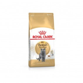 Royal Canin British Shorthair - Aliment pour chats