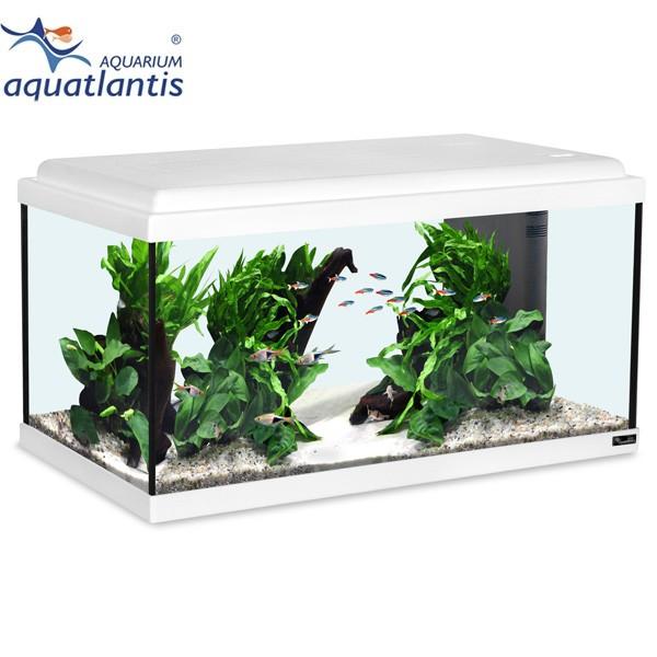 Aquatlantis Aquarium Advance LED 60 - Weiß