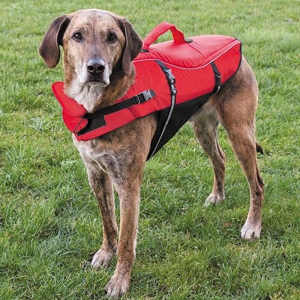 Schwimmweste für Hunde XS
