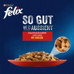 FELIX So gut wie es aussieht in Gelee Geschmacksvielfalt vom Land