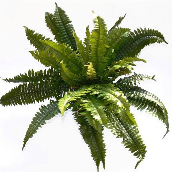 Plante artificielle pour aquarium - Fougère n ° 2.