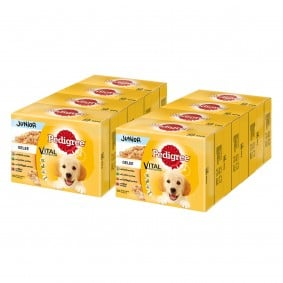 Pedigree Junior in Gelee Multipack