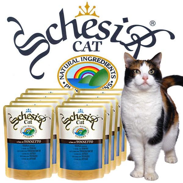 Schesir Soft Katzenfutter in Frischebeutel 20x100g