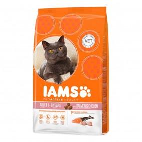 IAMS Katze Trockenfutter Adult Lachs