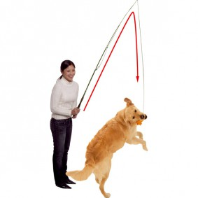 Karlie Dog Dangler Trainingsangel