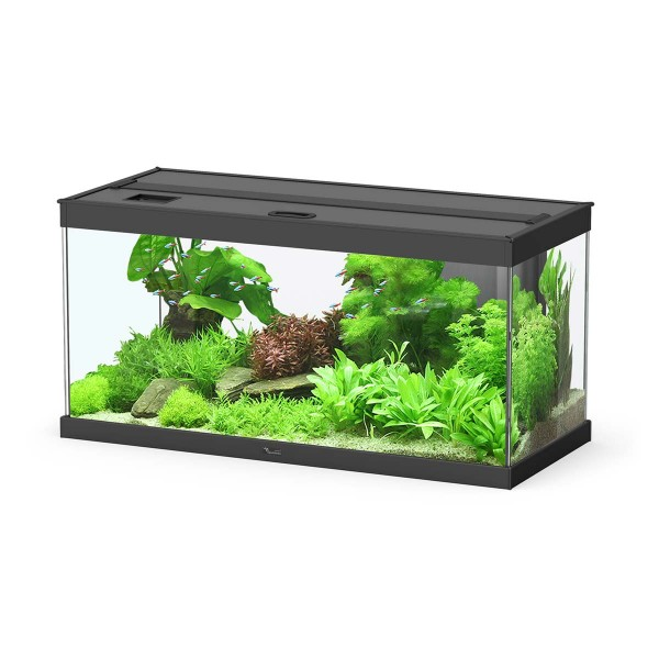 Aquatlantis Aquarium-Kombination Elegance Expert 2.0 86 Liter