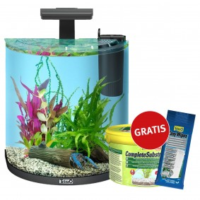 Tetra AquaArt Explorer Line Halfmoon 30l Anthrazit + Complete Substrat 2,5 kg & Easy Wipes GRATIS