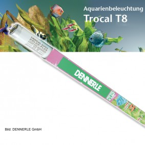 Dennerle Trocal de Luxe T8 Color Plus - Tubes fluorescents pour aquarium