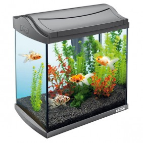 nano aquarium f r kleine fische garnelenzucht zooroyal. Black Bedroom Furniture Sets. Home Design Ideas