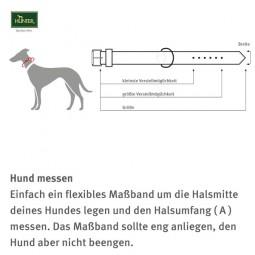 Hunter Elchlederhalsband Petit für kleine Hunde chili mit Strass