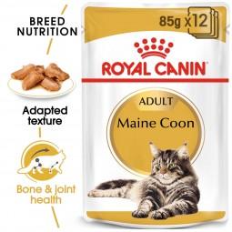 ROYAL CANIN Maine Coon Adult Katzenfutter nass 12x85g