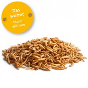 Bunny Lust auf Natur DAS WURMT - Mehlwürmer 35g
