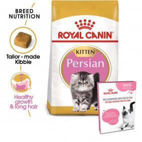 ROYAL CANIN Feline Health Nutrition Kitten Persian 4kg + ROYAL CANIN Willkommens-Box Kitten