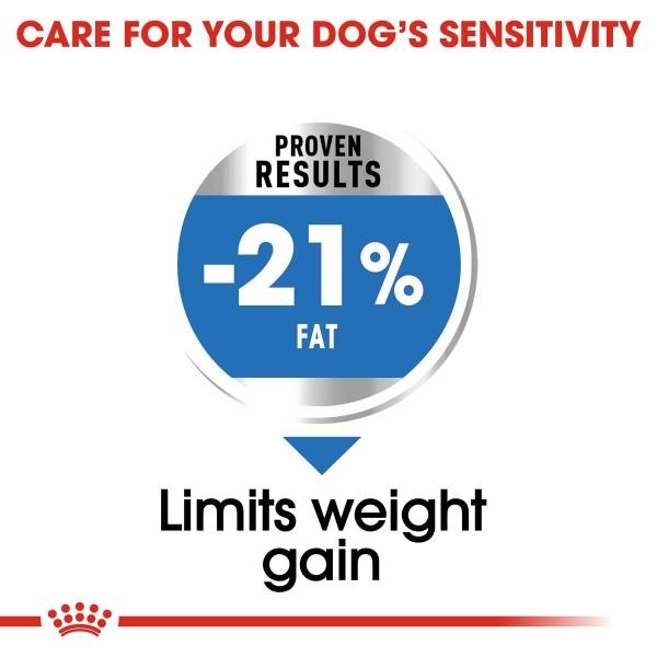 ROYAL CANIN LIGHT WEIGHT CARE MEDIUM Trockenfutter für mittelgroße Hunde mit Neigung zu Übergewicht