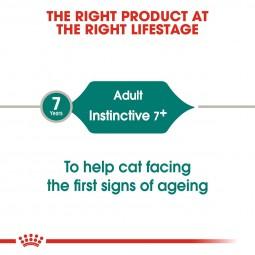 ROYAL CANIN INSTINCTIVE 7+ Nassfutter in Soße für ältere Katzen 48x85g