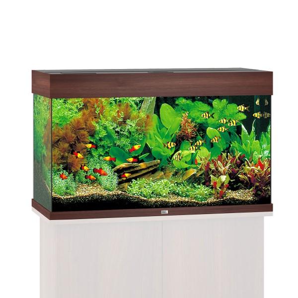 Aquarium Rio 125 ohne Schrank - Dunkelbraun