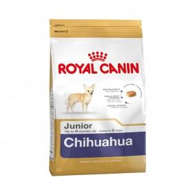 Schipkau Angebote Royal Canin Chihuahua Junior - 500g