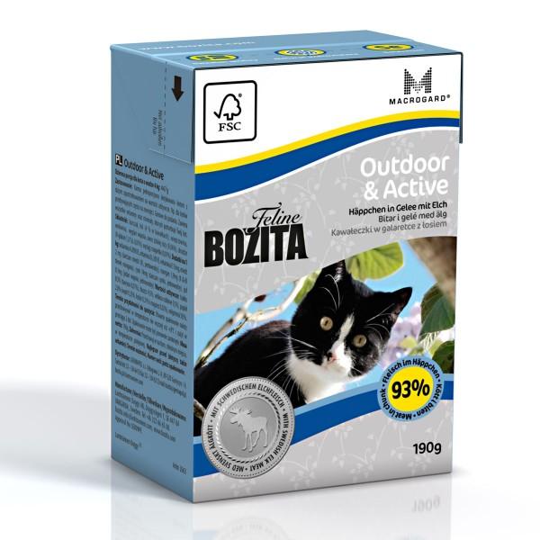 Bozita Feline Funktion Outdoor & Active 16x190g