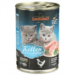 Leonardo Kitten reich an Geflügel
