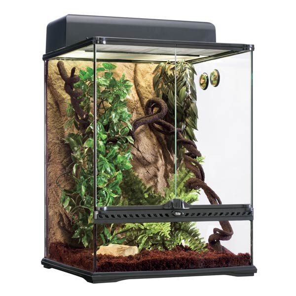 Exo Terra Terrarium Set Habitat Kit Rainforest - klein