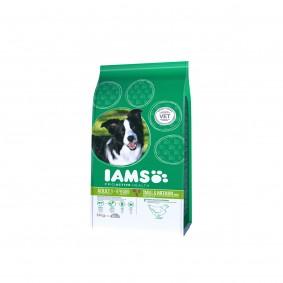 IAMS Hund Adult Trockenfutter Kleine & Mittelgroße Rasse Huhn