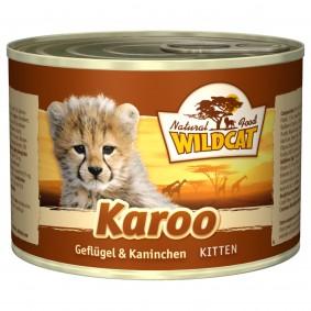 Wildcat Karoo Kitten mit Geflügel und Kaninchen
