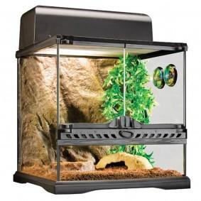 Exo Terra Terrarium Set Habitat Kit Invertebrate