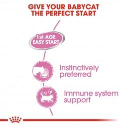 Royal Canin Katzenfutter Babycat Instinctive 12x195g