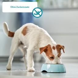 ZooRoyal Rind plus Hundefutter Mixpaket 800g Dosen