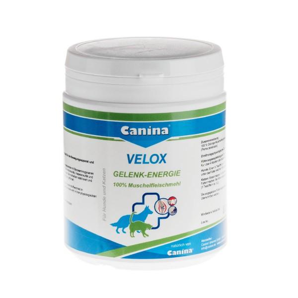Canina Pharma Velox Gelenkenergie