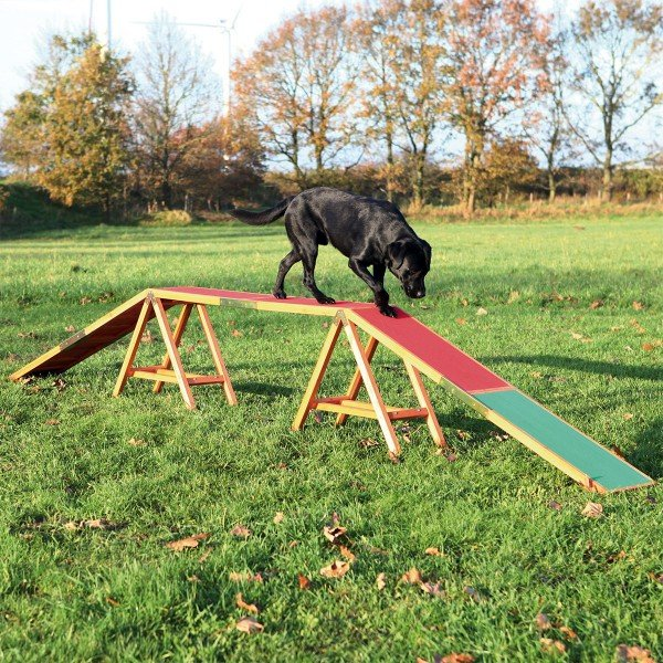 trixie dog activity agility steg g nstig kaufen bei zooroyal. Black Bedroom Furniture Sets. Home Design Ideas
